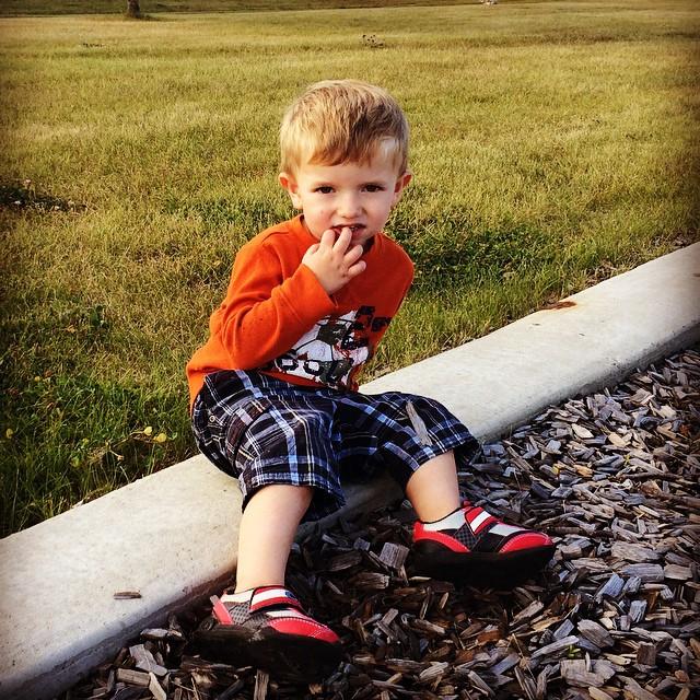 Maxi at the park.