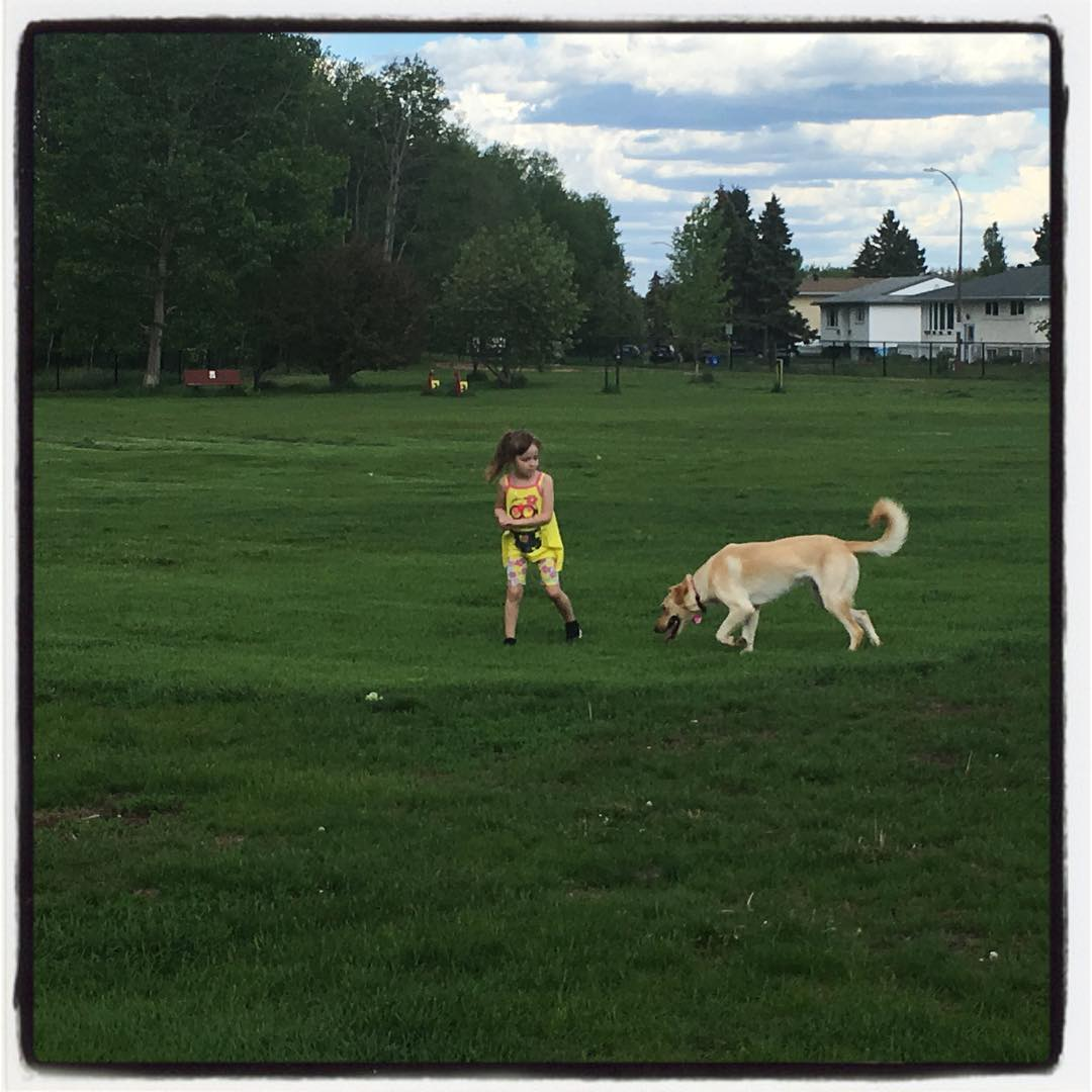 Dog park is very green. And empty!
