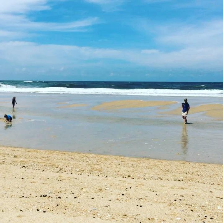 Windy day in Praia de Mira