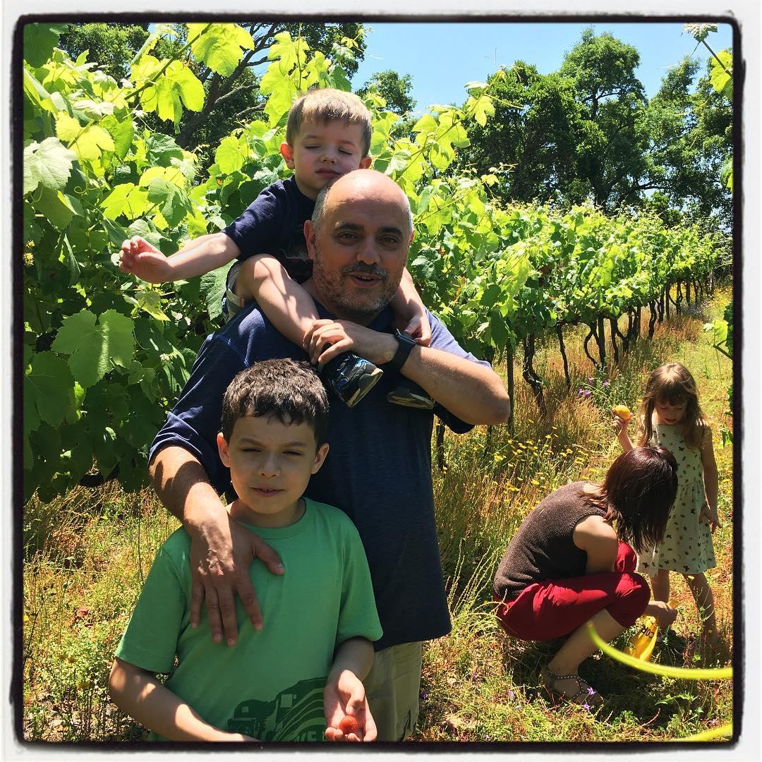 Uncle Victor's vineyard.