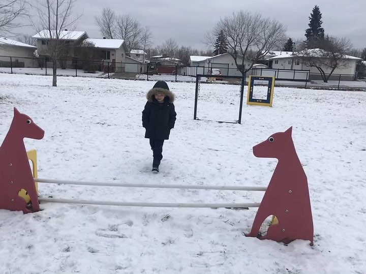 ❄️🐕 🏃🏼‍♂️winter dog park.