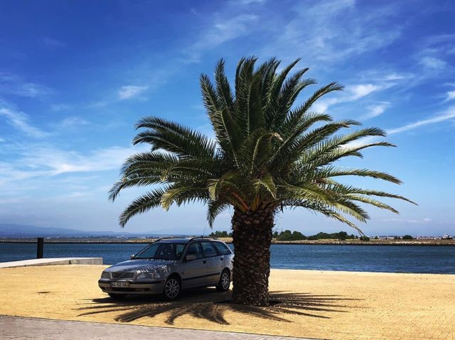 The perfect Portuguese 🇵🇹 parking spot.  In the shade.