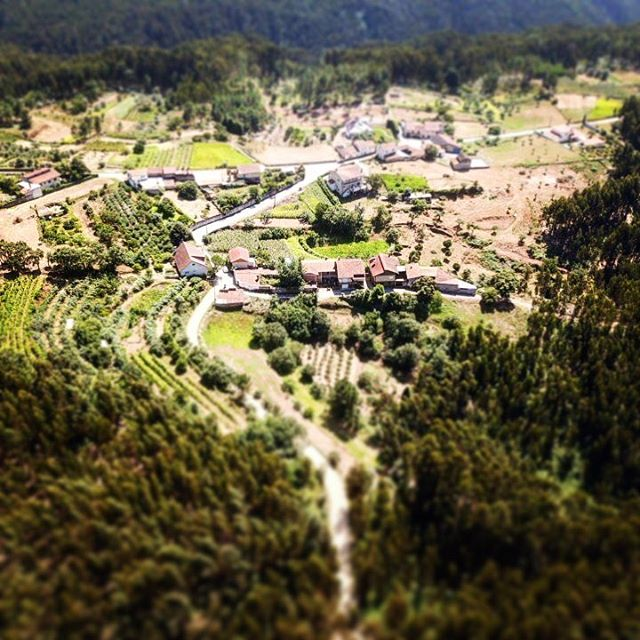 Casqueira from the sky