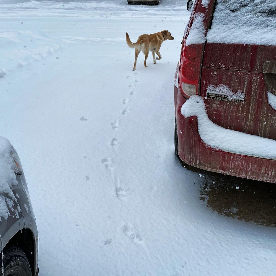 More snow :-(