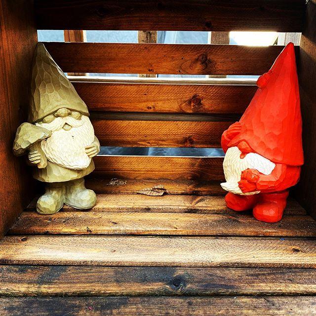 I'm gonna gram these gnomes.